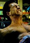 Der unglaubliche Hulk Bild 4