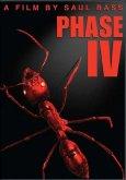 Phase IV Bild 4