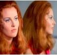 The Forbidden Photos of a Lady Above Suspicion Bild 3