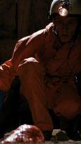 Alien - Die Saat des Grauens kehrt zurück Bild 3
