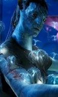 Avatar Bild 7