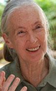 Jane's Journey - Die Lebensreise der Jane Goodall Bild 1