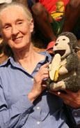 Jane's Journey - Die Lebensreise der Jane Goodall Bild 3