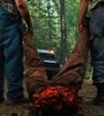 Tucker & Dale vs. Evil Bild 4
