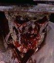 Woodoo - Die Schreckensinsel der Zombies Bild 4